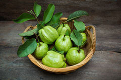Guave royalty-vrije stock fotografie