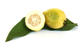 Guave op Groen Verlof Stock Afbeelding