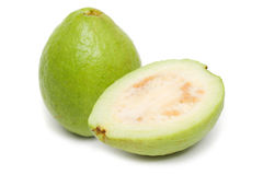 Guave (Psidium guajava) Royalty-vrije Stock Fotografie