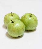 Guave (tropische Frucht) Lizenzfreies Stockfoto