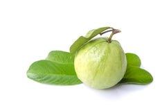 Guave (tropische Frucht) auf weißem Hintergrund stockfotos