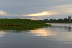 Guaviare river Royalty Free Stock Photos