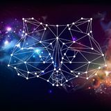 Guaxinim animal do tirangle poligonal abstrato no fundo do espaço aberto Imagens de Stock