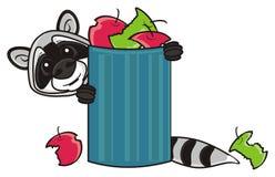 Guaxinim e balde do lixo ilustração stock