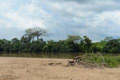 Guayabero的河在哥伦比亚 图库摄影