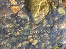 河Guayabo 库存照片