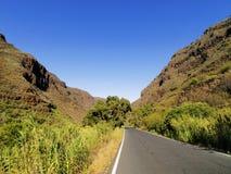 Guayadeque沟壑 免版税库存照片