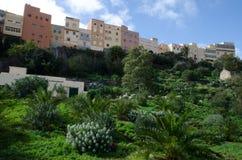Guayadeque ravine. Agüimes. Gran Canaria. Canary Islands. Spain Stock Photography