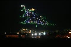 Gubbio drzewo Zdjęcia Royalty Free