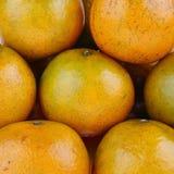 Gubi wizerunek grupowe pomarańcze Zdjęcie Stock