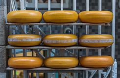 Guda Cheese shop in Amsterdam royalty free stock images
