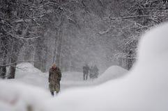 GUDAURI, GEÓRGIA - FEBRARY 4, 2013: Os habitantes de Moscou caíram sob nevadas fortes Imagem de Stock Royalty Free