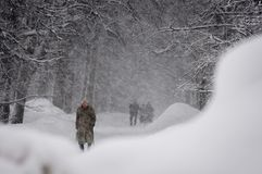 GUDAURI, GEORGIË - FEBRARY 4, 2013: De inwoners van Fe van Moskou Stock Foto