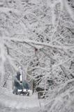 GUDAURI, GEORGIË - FEBRARY 4, 2013: De inwoners van Moskou vielen onder zware sneeuw Stock Afbeelding
