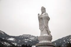 Gudinna Pusa med snö Royaltyfri Foto