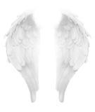 Gudomliga ljusa vita Angel Wings Royaltyfri Bild