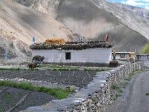 Gue village in Indian Himalayas. Royalty Free Stock Photos