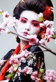 Gueixa bonita nova no quimono preto entre sakura, cl asiático do ethno fotografia de stock