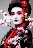 Gueixa bonita nova no quimono preto entre sakura, cl asiático do ethno foto de stock royalty free