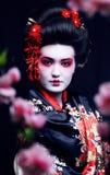 Gueixa consideravelmente real dos jovens no quimono com sakura e decoração sobre imagem de stock