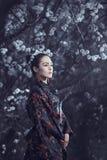 Gueixa no quimono vermelho em sakura imagens de stock royalty free