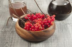 Guelder (arrow wood) berries and syrup Royalty Free Stock Photo