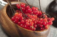 Guelder (arrowwood) berries and  syrup. Concentrated and diluted Stock Photos