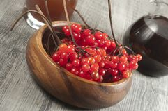 Guelder (arrowwood) berries and  syrup. Concentrated and diluted Royalty Free Stock Images