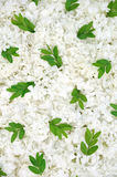 Guelder rose blossoms and myrtle leaves - backgrou Stock Photography