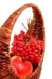 Guelder rose et pomme dans le panier Photo stock