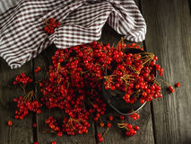 Guelder-rose on a wooden table Royalty Free Stock Photos