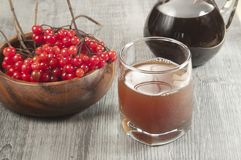 Guelder syrup Royalty Free Stock Photography
