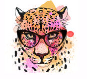 Guepard character colorful portrait Stock Photo