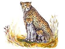 Guepardo con sentarse de los gatitos camuflado en la hierba en la sabana africana y la mirada adelante ilustración del vector