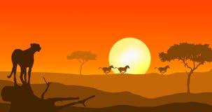 Guepardo y cebra en puesta del sol ilustración del vector