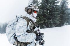 Guerra del ártico del invierno Fotos de archivo libres de regalías