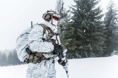 Guerra del ártico del invierno Foto de archivo libre de regalías