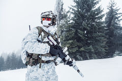 Guerra del ártico del invierno Imagen de archivo