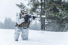 Guerra del ártico del invierno Fotos de archivo