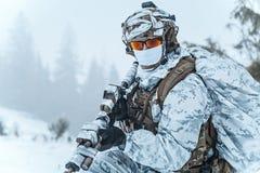 Guerra del ártico del invierno Foto de archivo