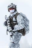 Guerra del ártico del invierno Fotografía de archivo libre de regalías
