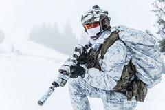 Guerra do ártico do inverno Imagem de Stock