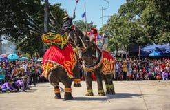 Guerra Iuthheete de la demostración del elefante Fotos de archivo