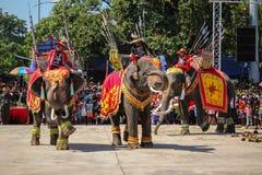 Guerra Iuthheete de la demostración del elefante Imágenes de archivo libres de regalías