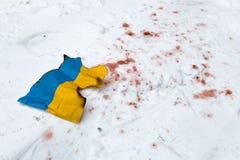 Guerra in Ucraina Immagine Stock Libera da Diritti