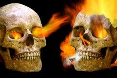 Guerra umana dei crani Immagine Stock