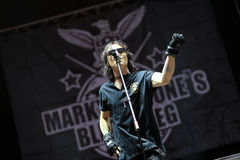 Guerre éclair de Marky Ramone s pendant un concert vivant image stock