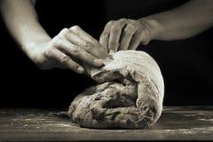 Guerre biologique de la pâte modifiée la tonalité images stock
