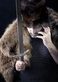 Guerreiro de Cimmerian.barbarian Imagens de Stock