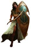 Guerreiro do duende ilustração stock
